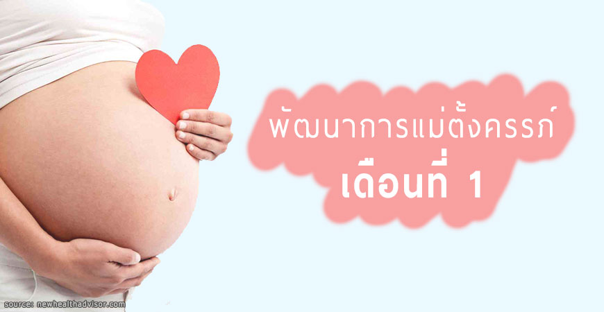 พัฒนาการของลูกน้อยและคุณแม่ตั้งครรภ์ เดือนที่ 1